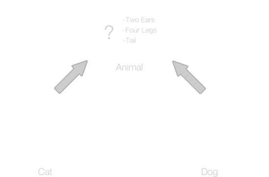 Animal_inheritance_corrected