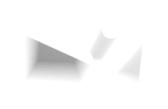 ssvs_raymarch